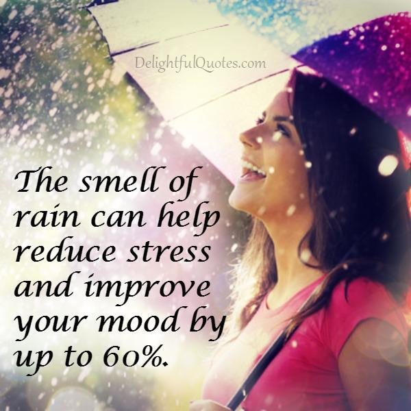 The smell of rain can help reduce stress